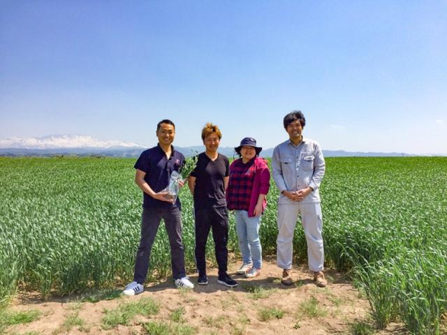 庄内産小麦への挑戦!【庄内産小麦 article no.1】