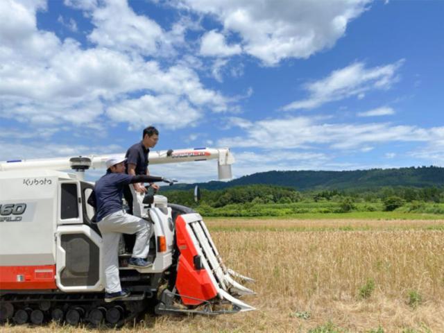 ベストな状態で収穫するためのプロフェッショナルな決断!!【article no.36~37】